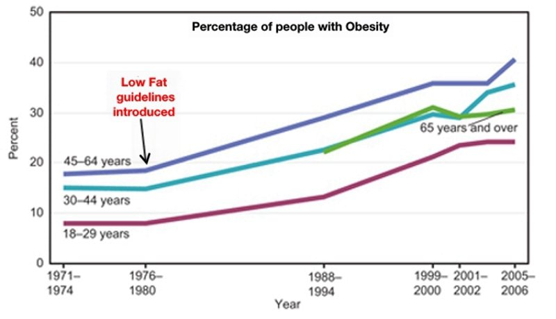 obesity-rate-graph